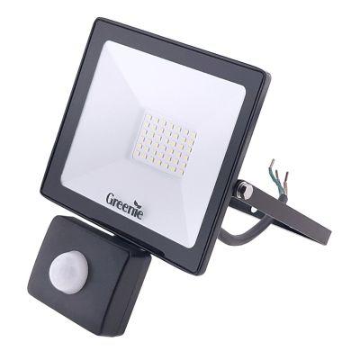 Naświetlacz LED Greenie Professional 30W z czujnikiem ruchu i zmierzchu IP65