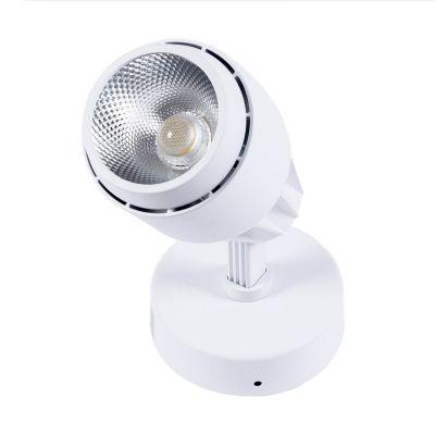 Reflektor nastropowy LED Greenie COB 20W biały